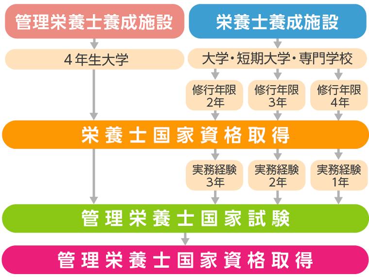 管理栄養士の資格取得のためのルート図