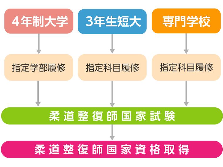 柔道整復師資格の取得におけるルート図